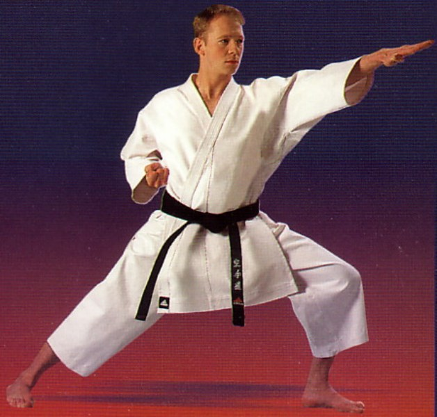 http//lad.vn.ua/uploads/images/foto/21_karate-stance20800x600.jpg