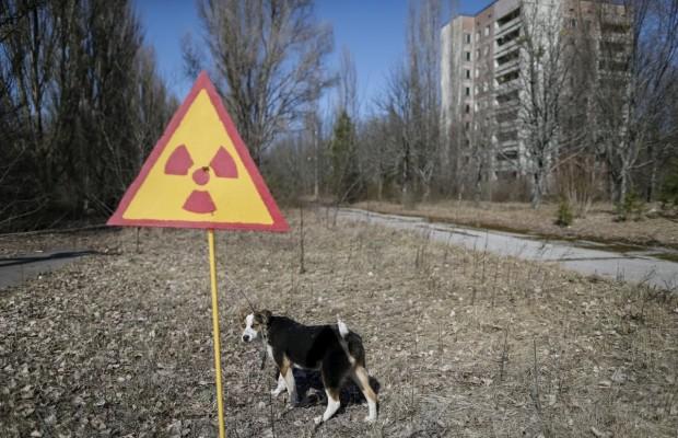 http//lad.vn.ua/uploads/images/foto/26_620_400_1461270225-9536.jpg