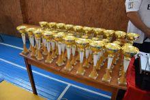 В Ладижині пройшов  VIII Всеукраїнський турнір з боротьби самбо  ім. Сагаєва